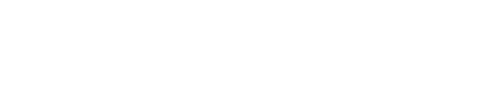 Mag2Lite Logo