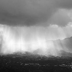flying-in-the-rain