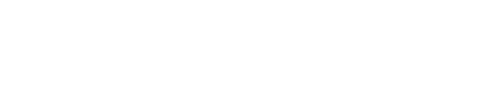 Speedster 2 Logo