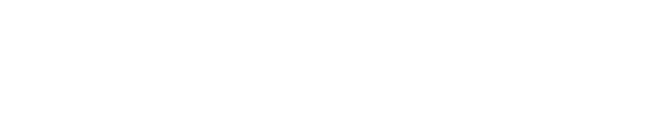 Firefly 3 Logo